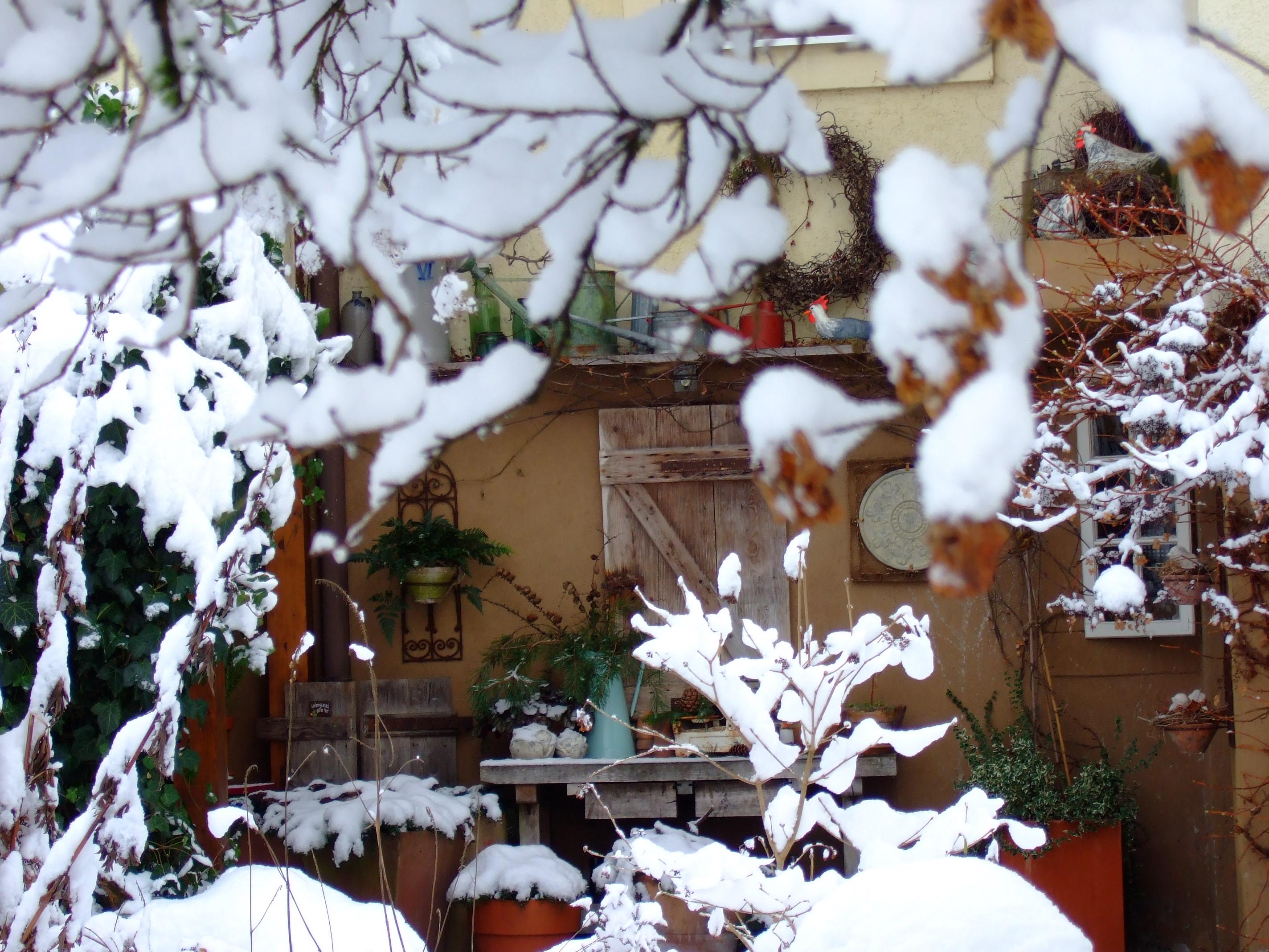 Winter (27)