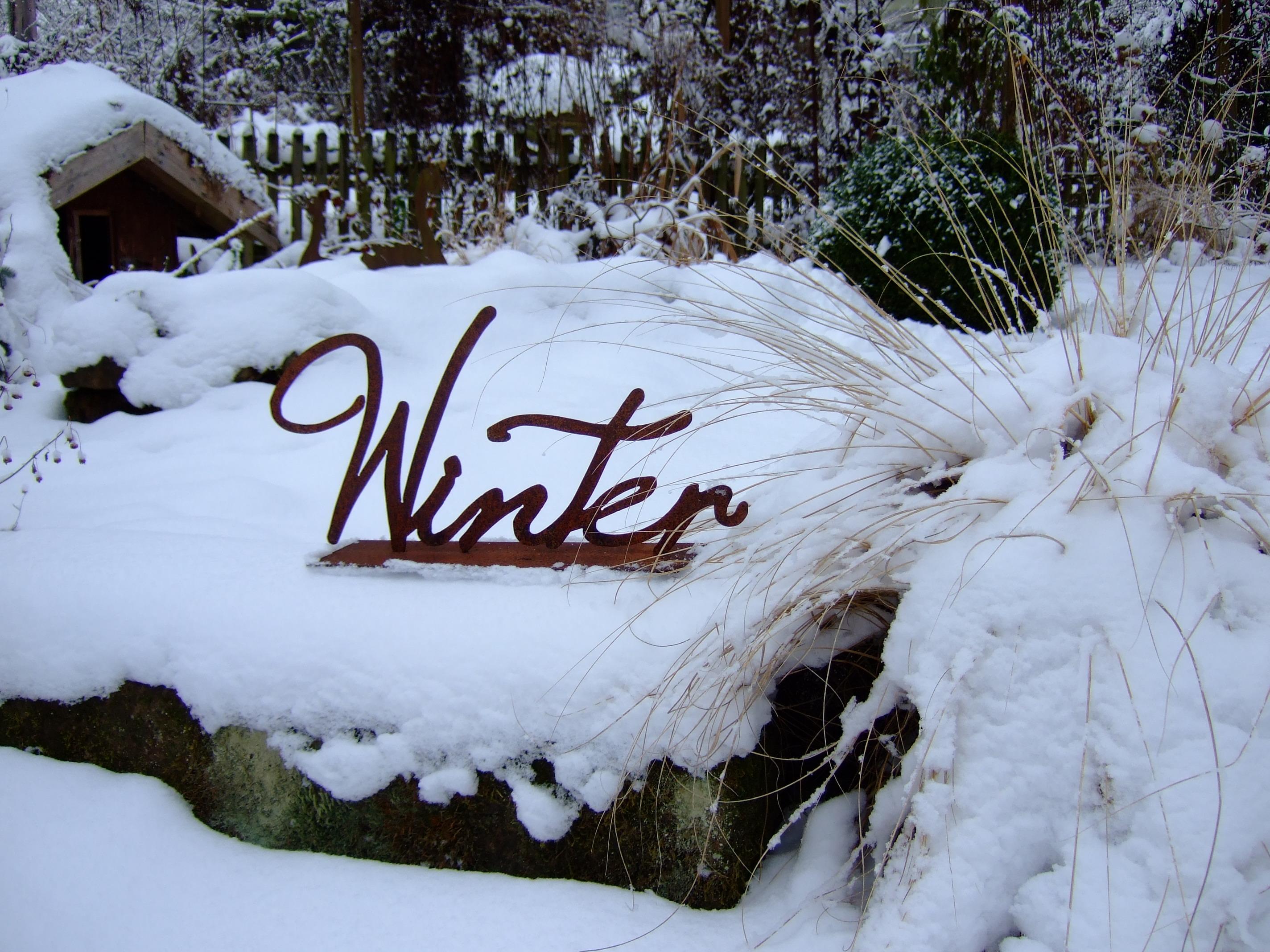 Winter (28)